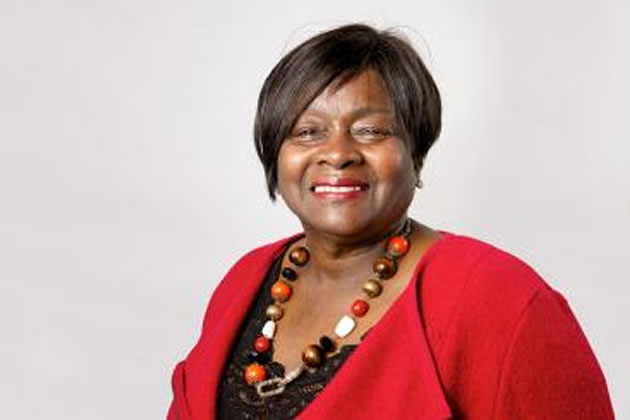 Labour's London Assembly Education Spokesperson, Jenette Arnold OBE