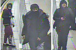 CCTV Images Issued After Central Line Assault